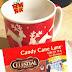 Celestial Seasonings Candy Cane Lane Green Tea Taste Test