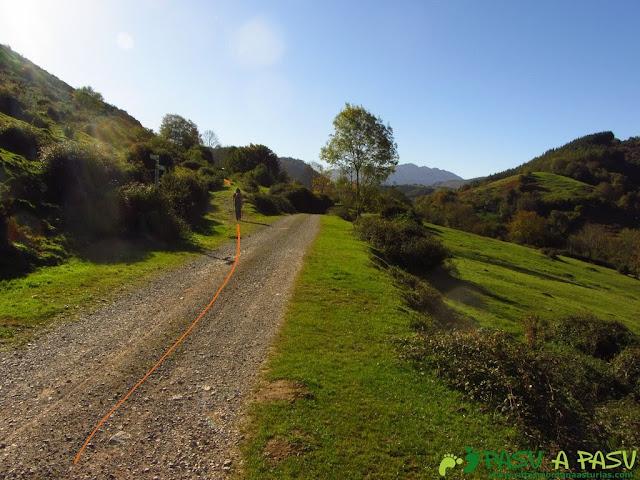 Campera Llaxe en la ruta del Bosque de Cea