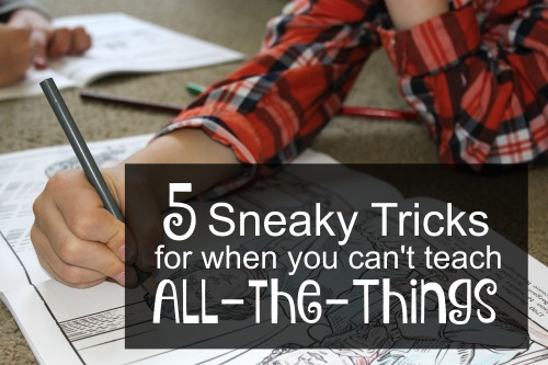 5 Sneaky Tricks for When You Can't Teach All-the-Things In Your Homeschool- A look at Dover Coloring/Activity Books