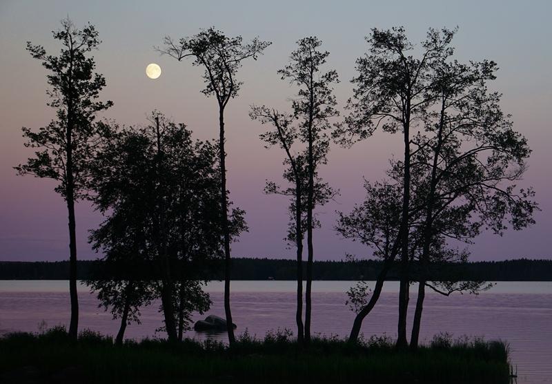 kesä, kesäyö, järvi
