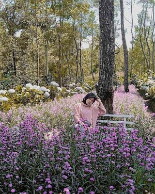 Taman Bunga Coban Talun