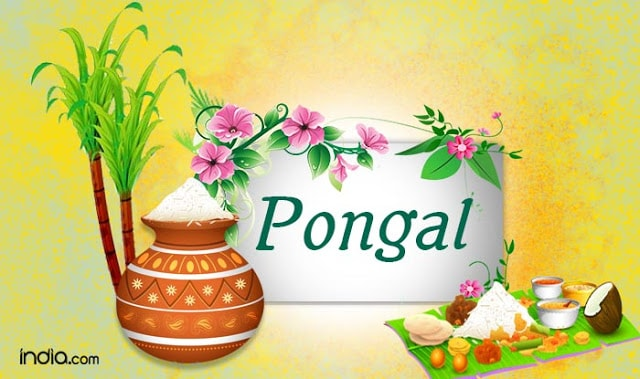 Happy Pongal and Makar sankranti