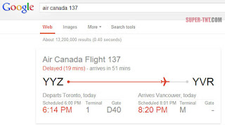 how to check my flight status in google