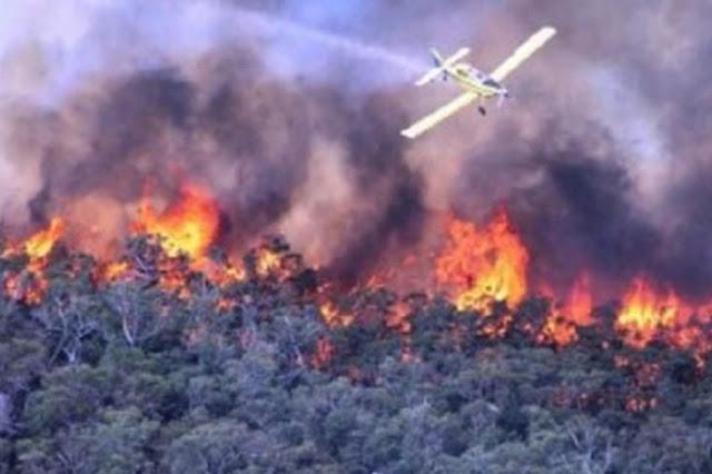 Ratusan Titik Api Dalam 10 Hari Terakhir di Kalbar