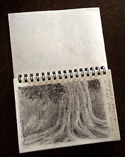 Graphite drawing in a sketch book by Manju Panchal using Camlin 10B pencil