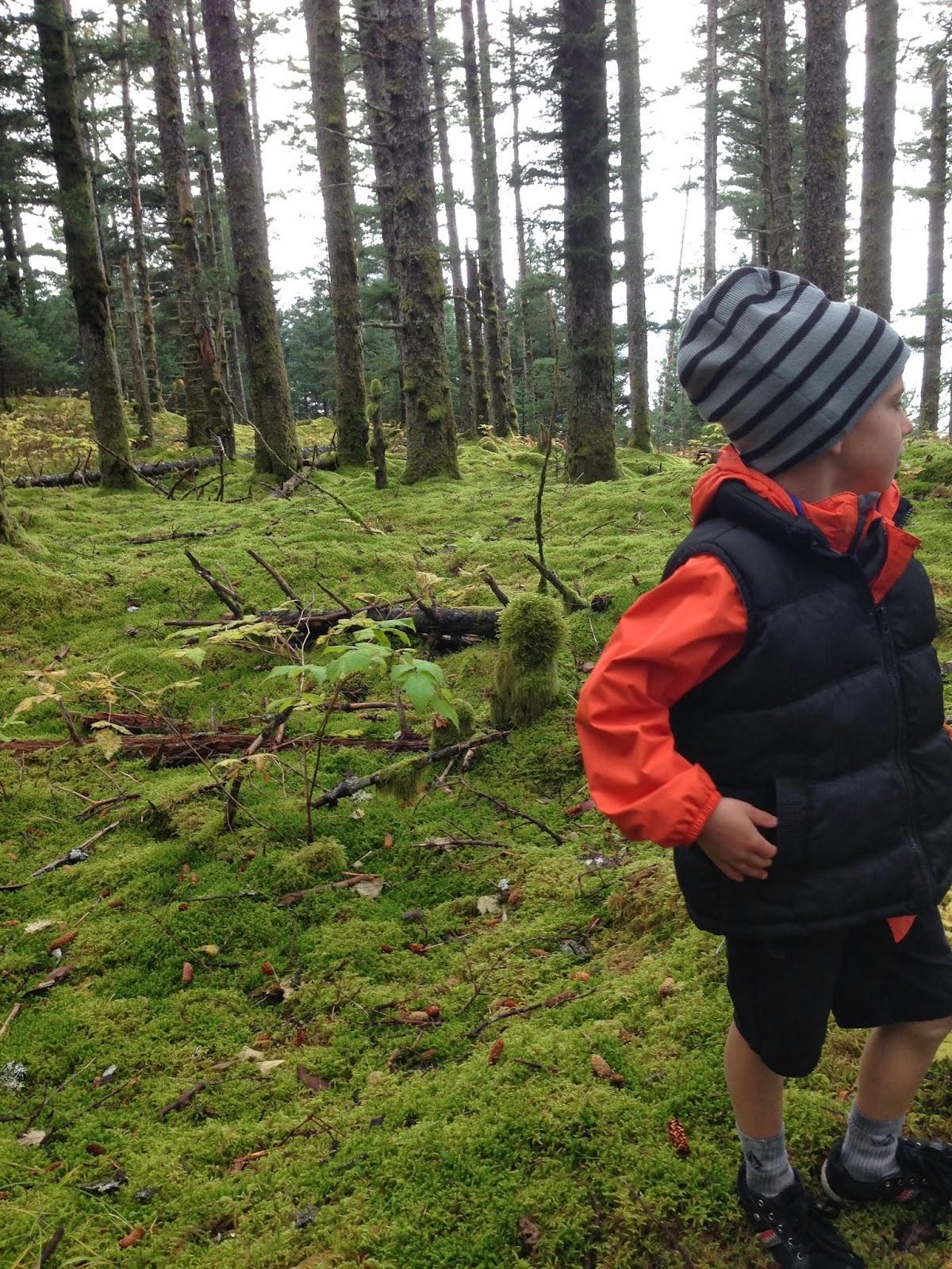 Branch Habitat Nature Walk And Journaling