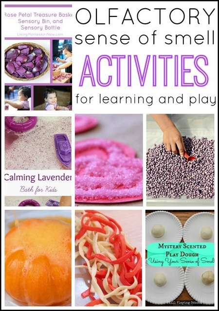 These olfactory sense of smell sensory play activities and sensory play ideas use scented sensory play to calm or stimulate the senses!