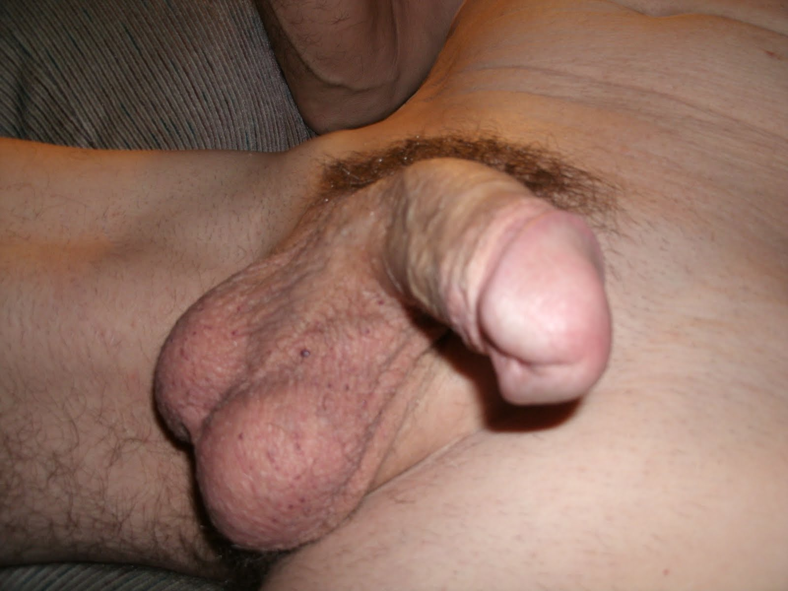 Penis soft to hard