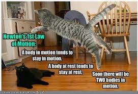 aplikasi hukum newton dalam kehidupan sehari-hari, arti hukum newton dalam kehidupan