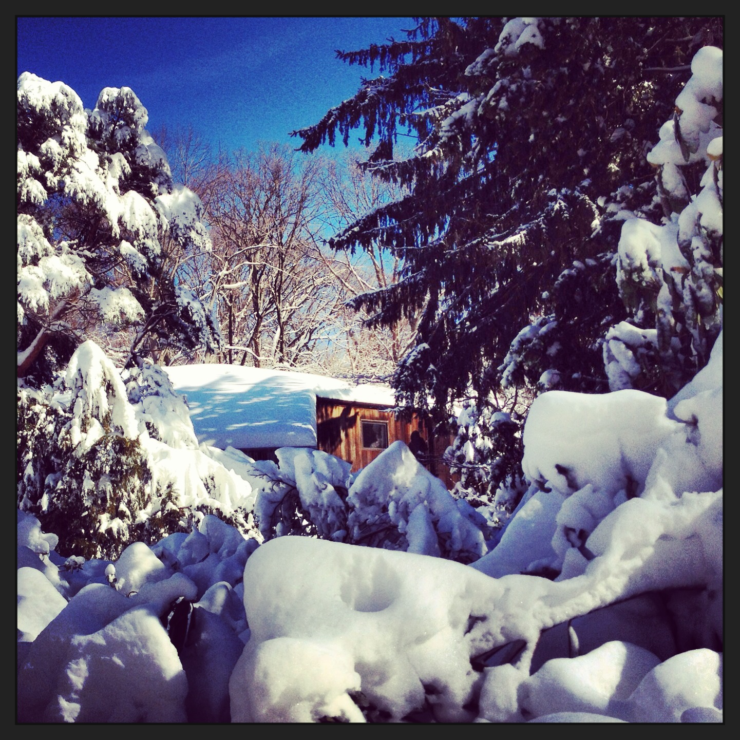 The Cool House: Snowstorm Winter 2012/2013