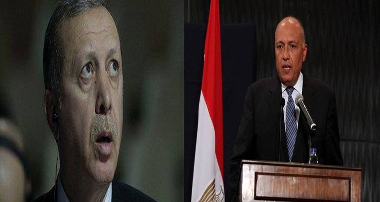 بالفيديو...تصرف غير متوقع من وزير خارجية مصر عندما رفض أردوغان التصفيق له