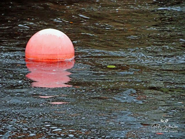 Floating Buoys 4 Photos + Video
