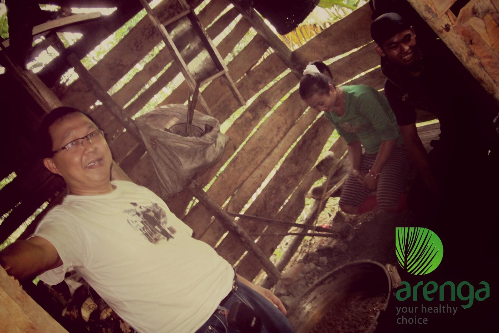 proyek gula aren organik Arenga