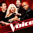 The Voice Season 3, Episode 3 The Blind Auditions, Part 3 Online Watch Free