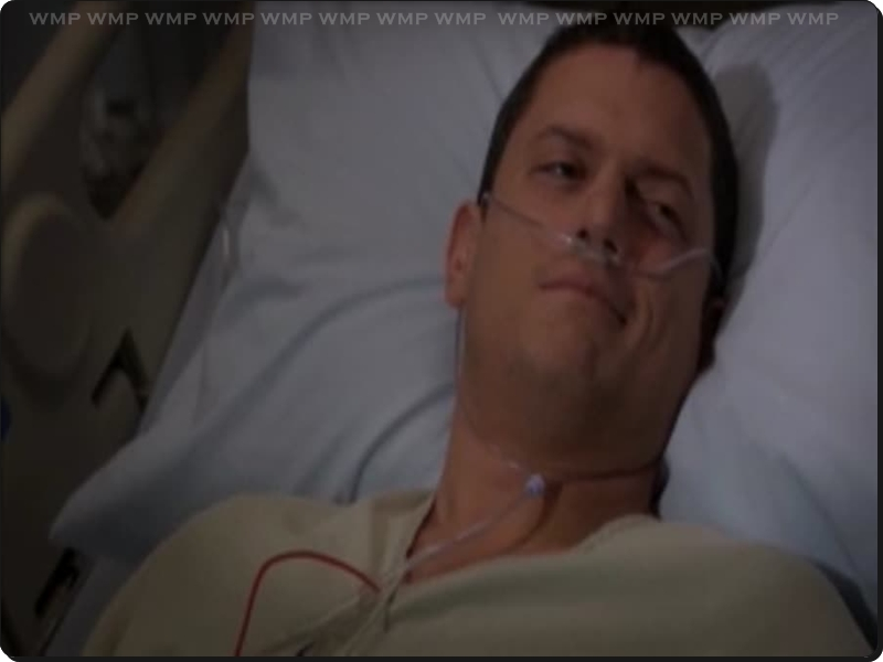 01/10/11 - 01/11/11 ~ Wentworth Miller Perfect