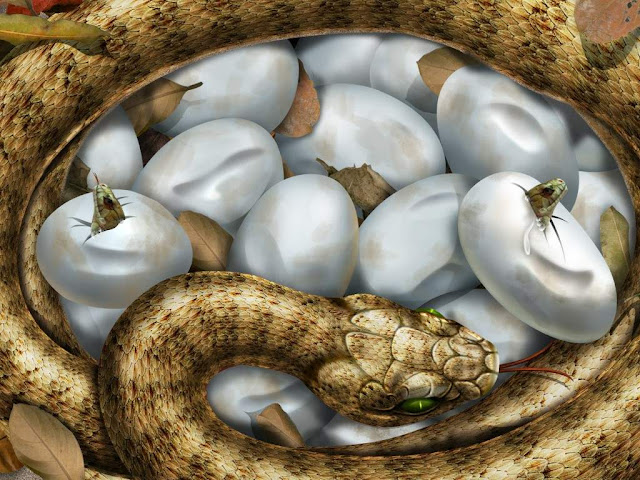 Visitantes vão decorar ovos de serpentes em atividades de Páscoa no Instituto Butantan