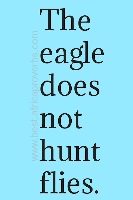 The eagle does not hunt flies. African proverb