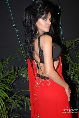 Sherlyn Chopra Saree