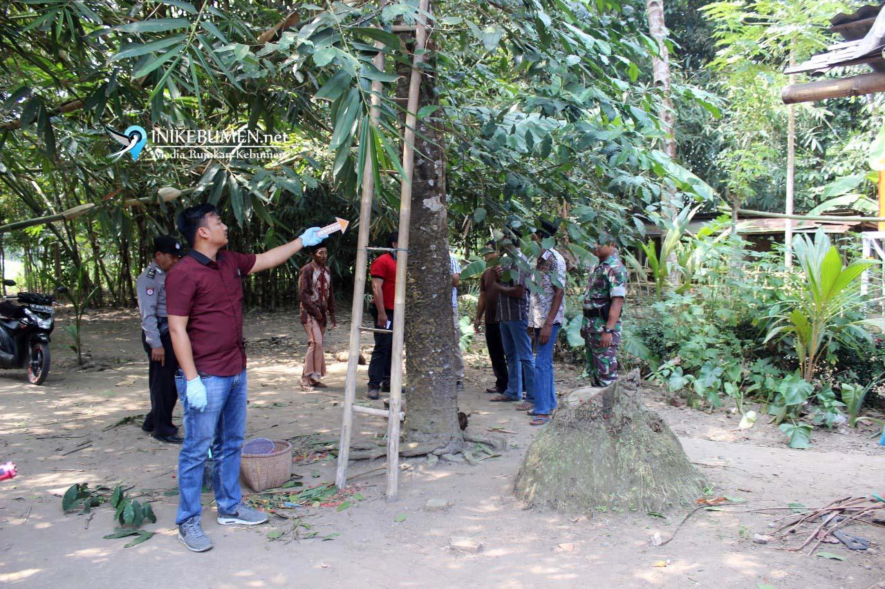 Jatuh dari Pohon Melinjo, Warga Karanggadung Meninggal Dunia