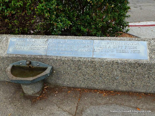 """""""Have a drink on Leland"""" pet water fountain"""