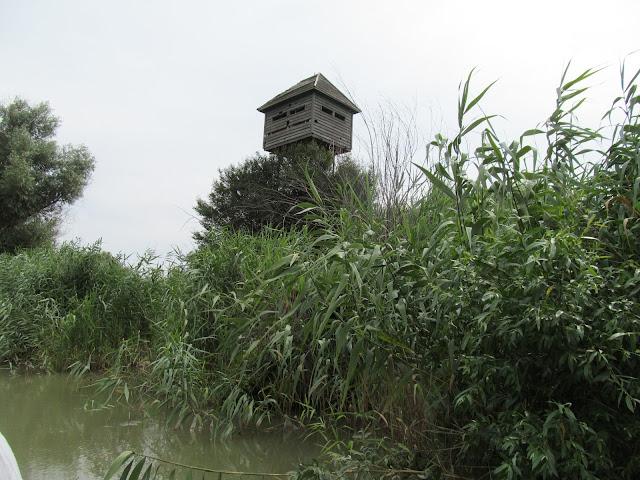trasee turistice sfantu gheorghe delta observator ornitologic