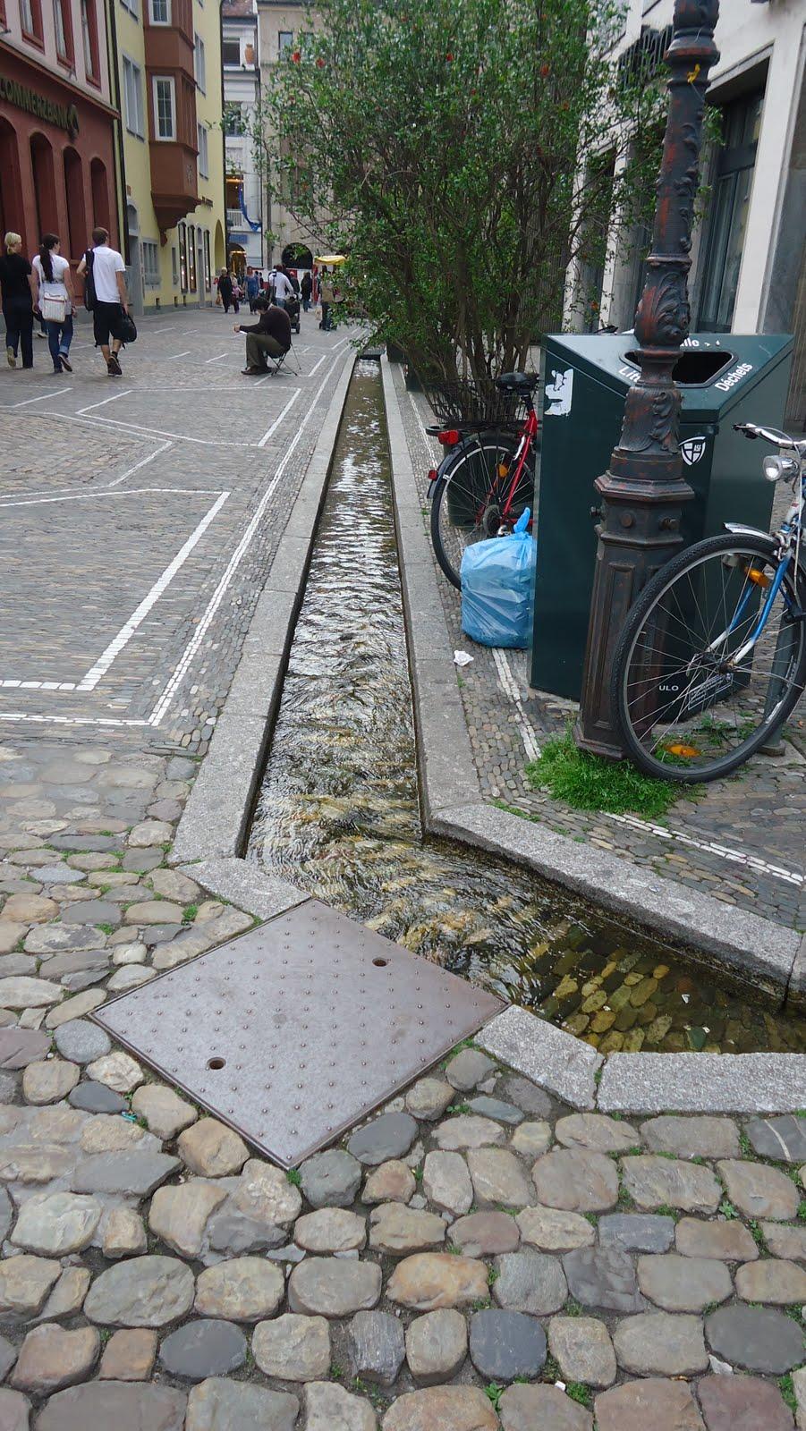 Reno Freiburg