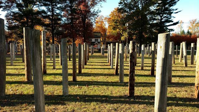 Там, де ростуть телефонні стовпи. Честер, Нью-Джерсі (Telephone Pole Farm, Chester, NJ)