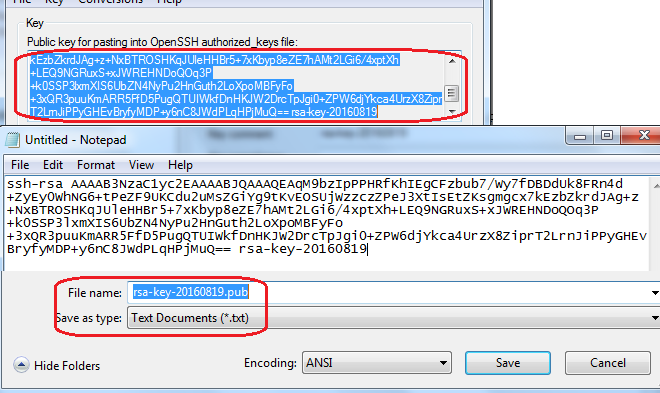 SOA Cloud save Generated Public Key