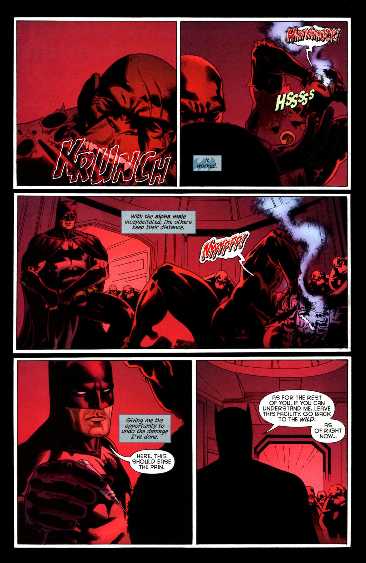 Batman Confidential Issue #37 #37 - English 19