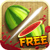 New game Fruit Ninja Download for free