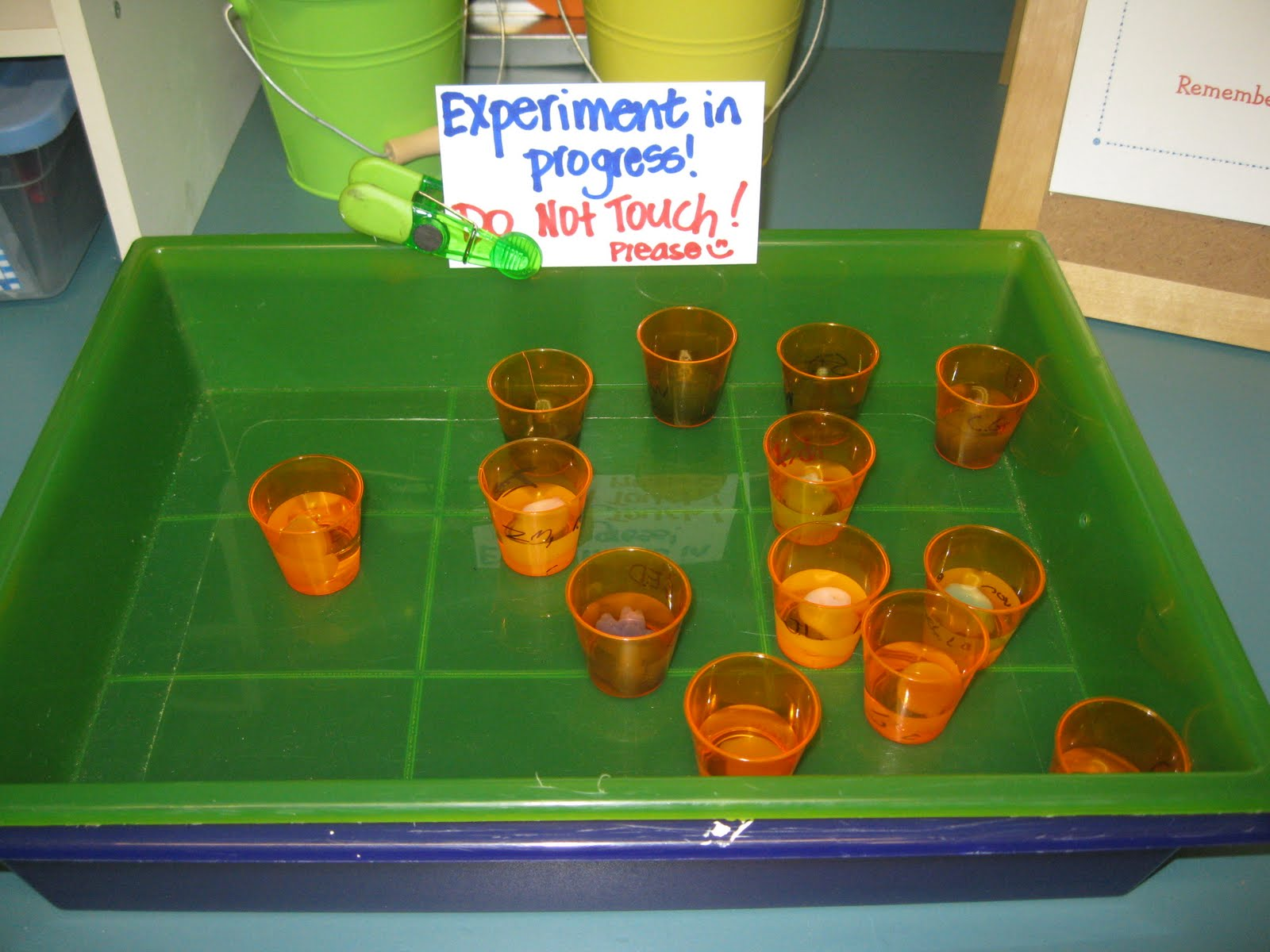 Third Grade Thinkers Spooky Science A Matter Experiment