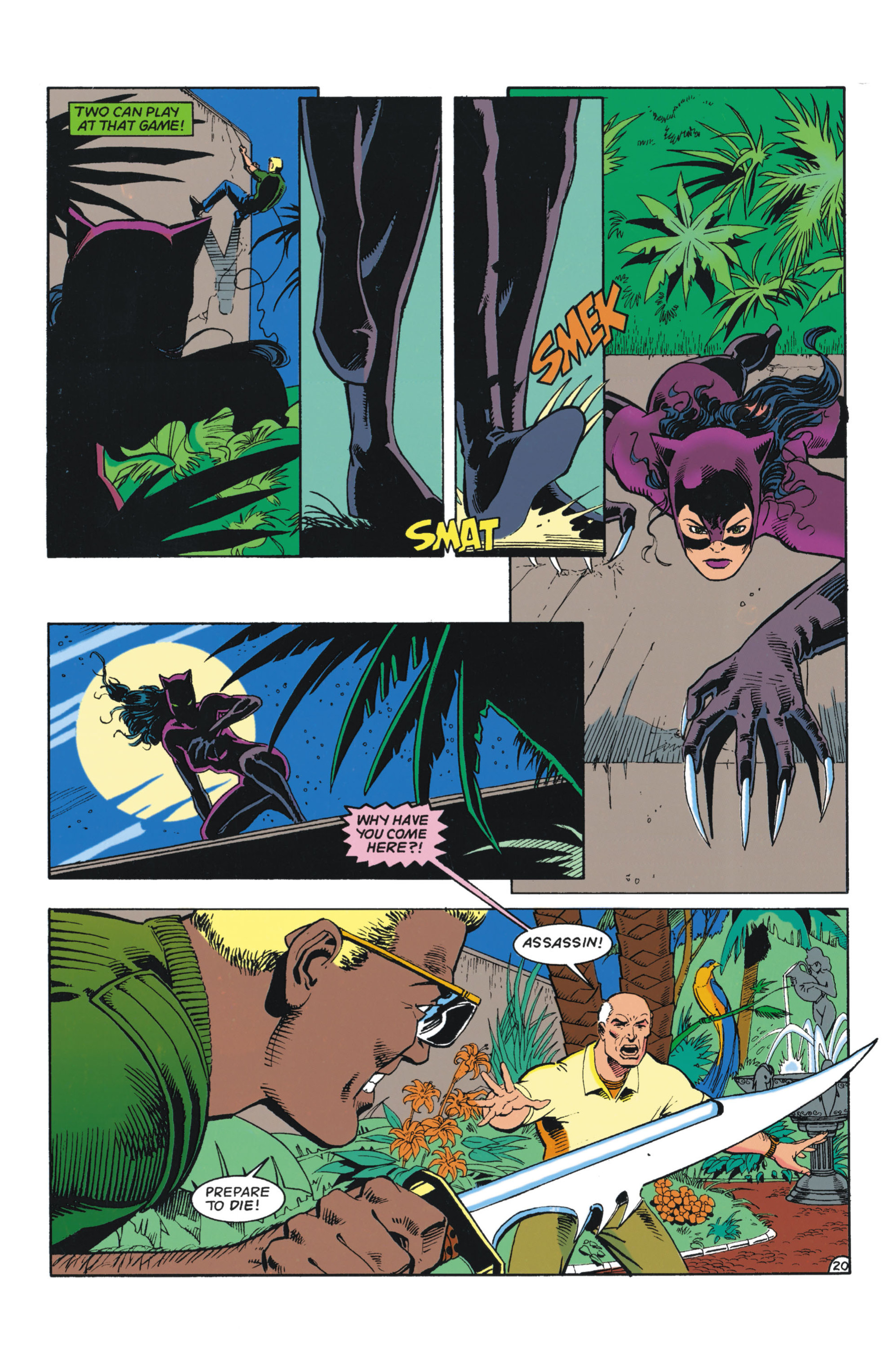 Catwoman (1993) Issue #3 #8 - English 21