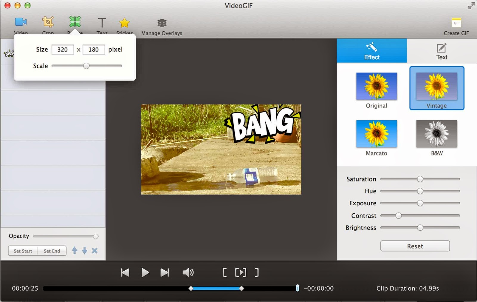 videogif resizing video