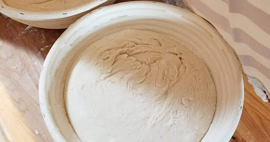 Sourdough:The Ups and Downs of Natural Leaven