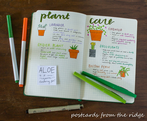 Lots of creative spreads and ideas for bullet journaling. Tips for newbies too!
