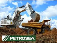 PT Petrosea Tbk - Recruitment For D3, S1 HSE Admin, Project Planner Petrosea May 2015