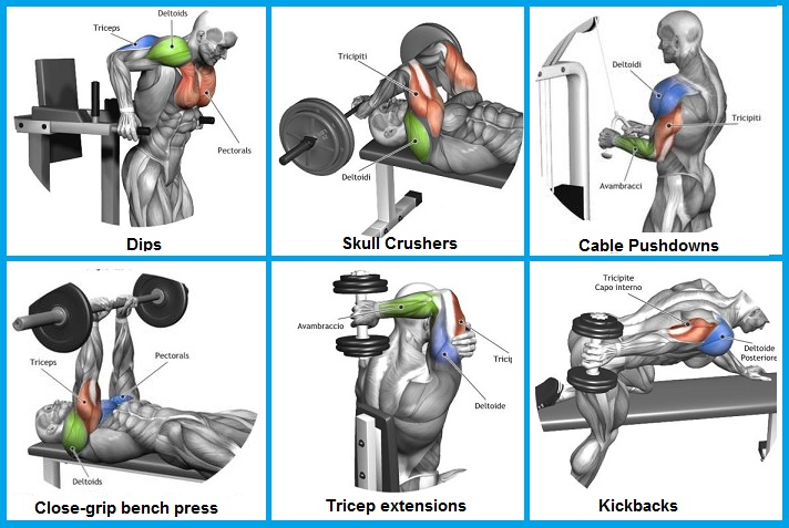 Best Exercise For Tricep Mass - How To Get Big Triceps
