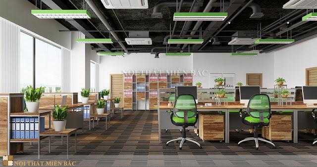 Không gian thiết kế nội thất văn phòng làm việc trẻ trung, tươi mới được thể hiện qua những chi tiết trang trí tự nhiên như những chậu cây xanh