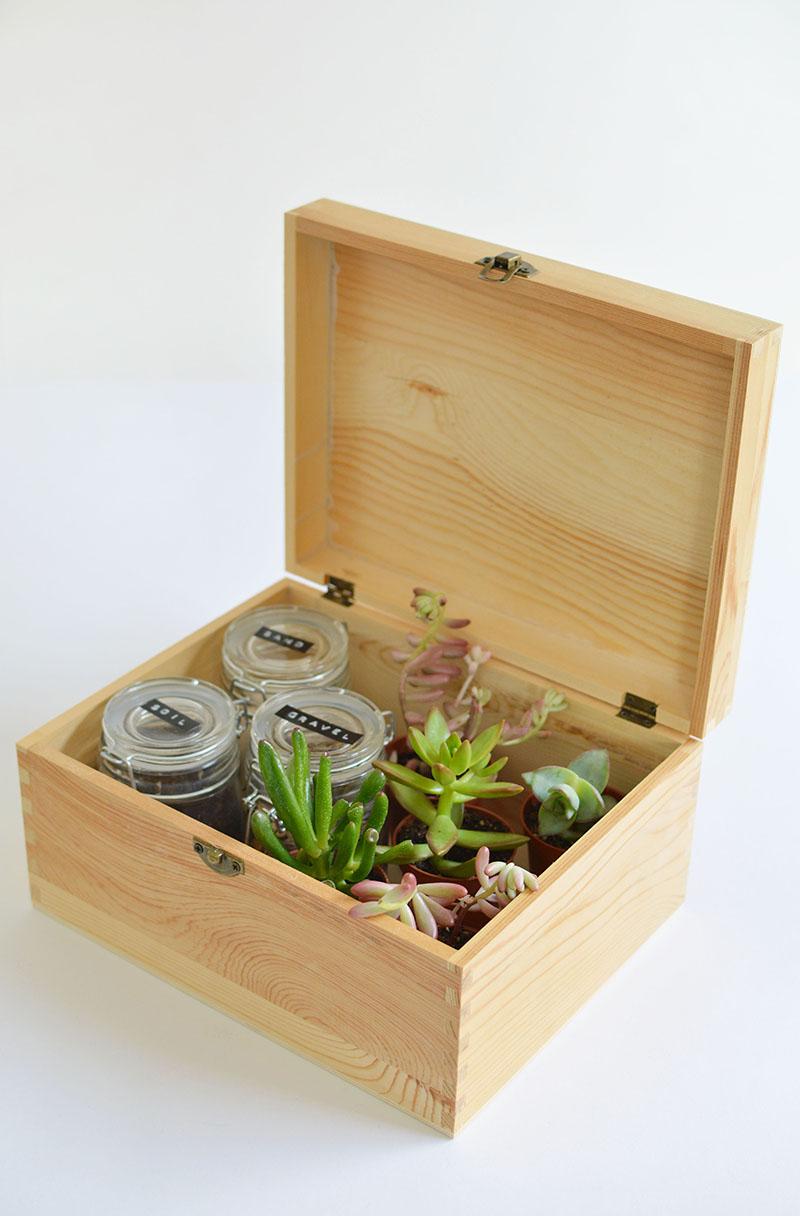 Diy Succulent Gift Box Burkatron