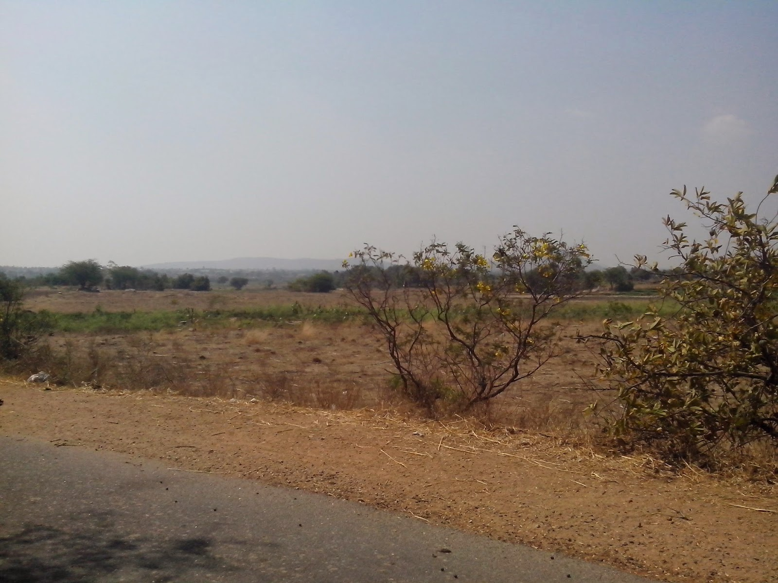 5 Acres Land for Sale Pillipally Village Yacharam Mandal | Digital