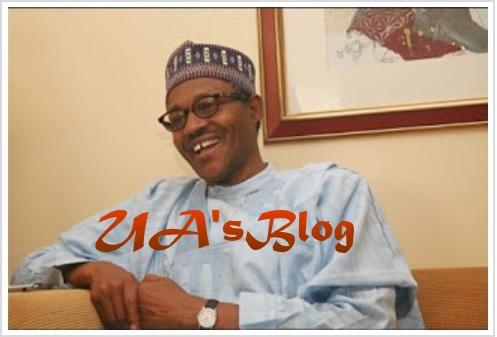 I'll take Nigeria to the next level - Buhari