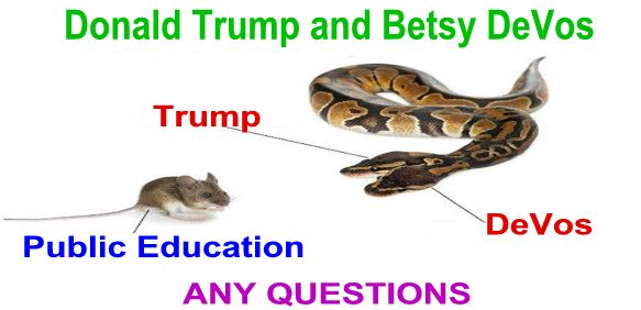 Image result for How I Finally Faced Up To The Hate Unleashed By Trump And Betsy DeVos