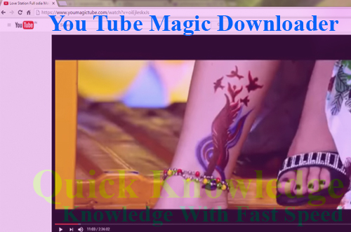 Download Youtube Videos by Magic