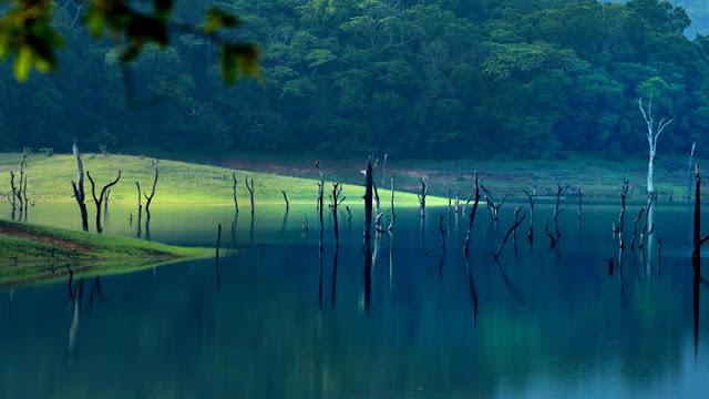 Thekkady lake photos