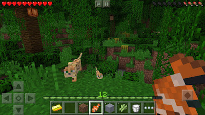 Minecraft: Pocket Edition v1.2.0.31