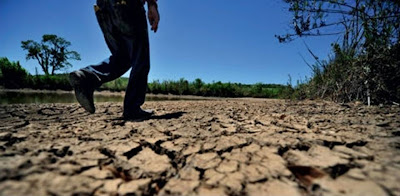 Resultado de imagem para Pesquisadores afirmam que seca no Nordeste deve se agravar entre fevereiro e abril