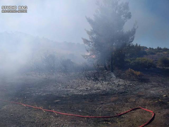 Υπό μερικό έλεγχο η φωτιά στα Δίδυμα Αργολίδας - 100 στρέμματα καμένα ο απολογισμός