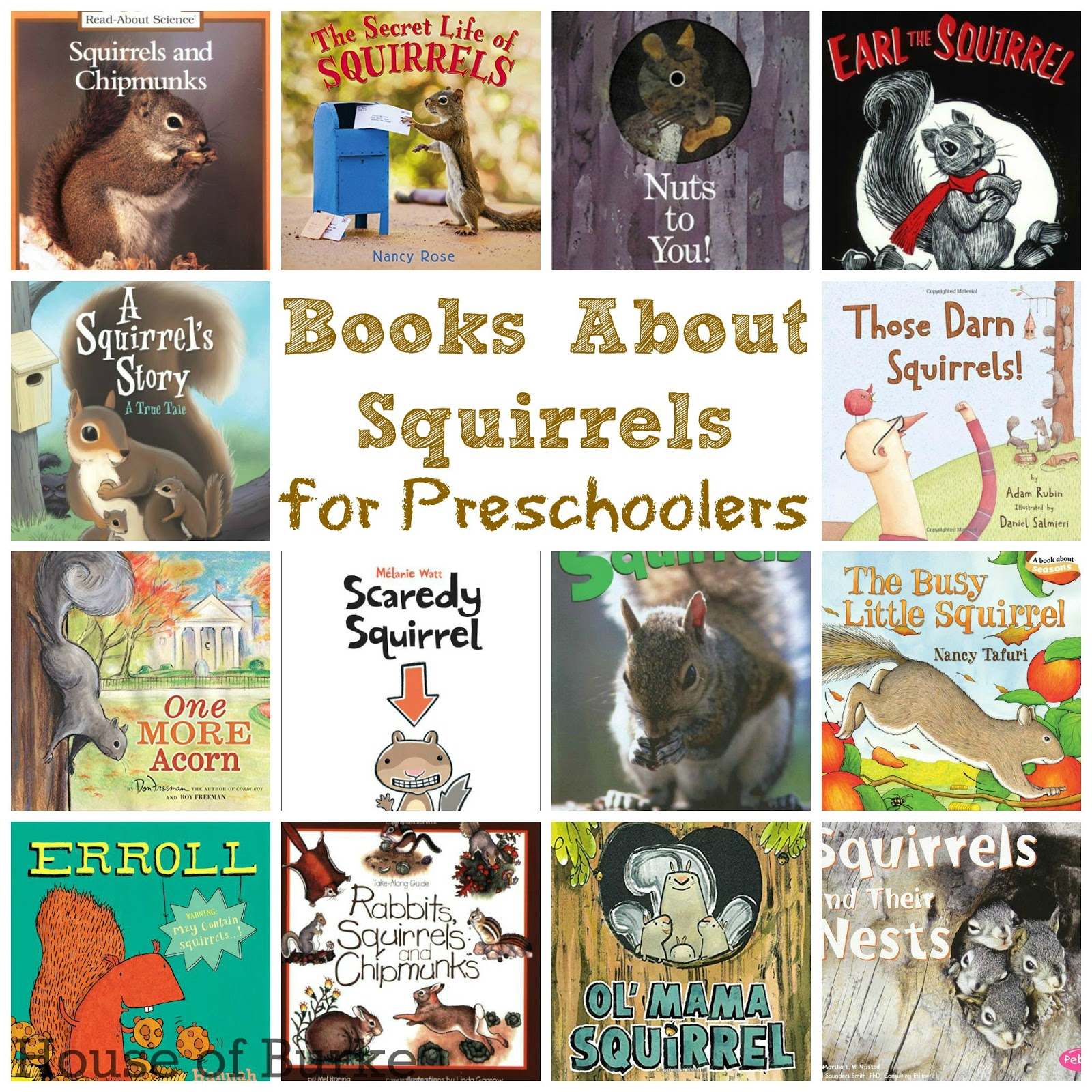 Books About Squirrels for Preschoolers