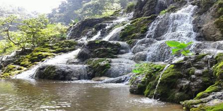 8 Tempat Wisata Lumajang Menawarkan Keunikan Artistik Alami Tak Tertandingi