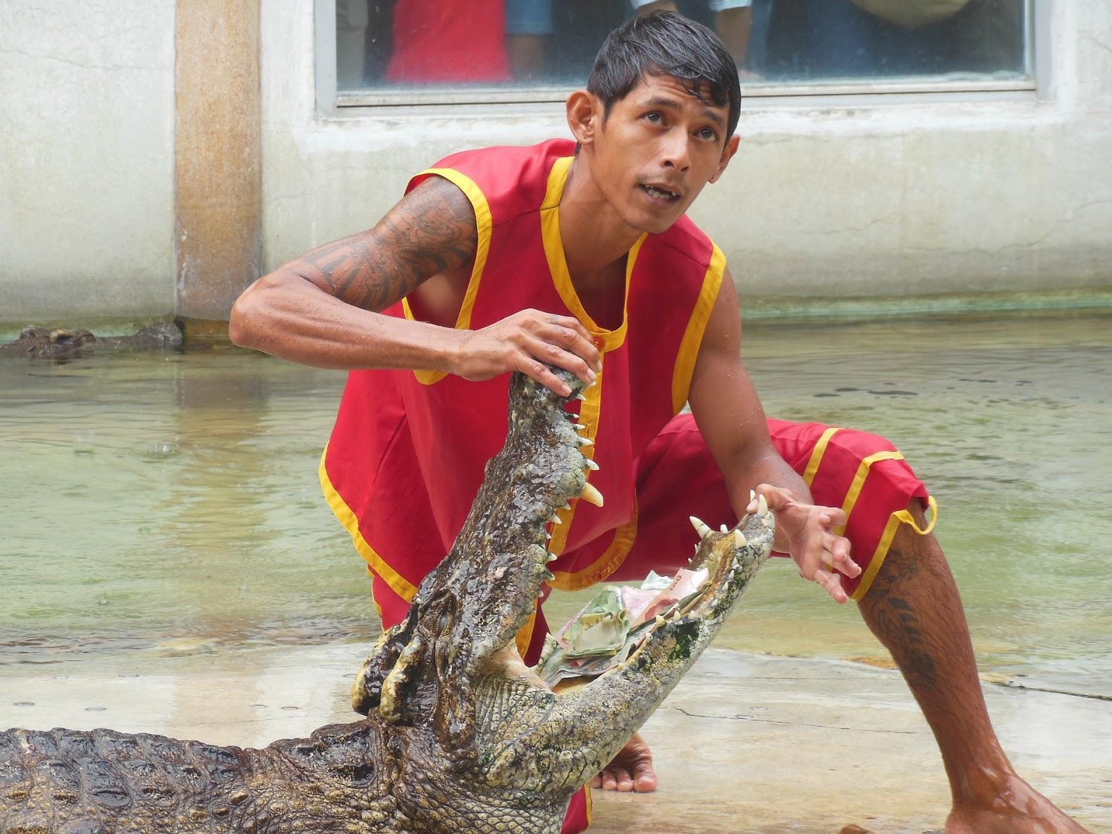 Samphran Crocodile show, Thailand